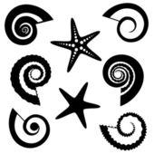 Shells and starfish silhouettes set