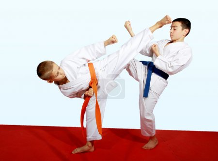 Two athletes doing sports paired exercises...