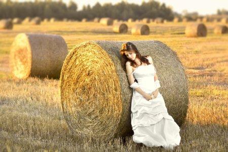 Photo pour Belle mariée posant dans le champ d'automne au coucher du soleil - image libre de droit