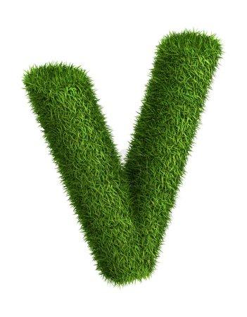 Césped natural letra V