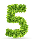 Number 5 vector alphabet of green leaves  on white background