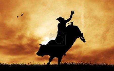 Photo pour Taureau au coucher du soleil - image libre de droit