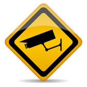 Video surveillance vector sign