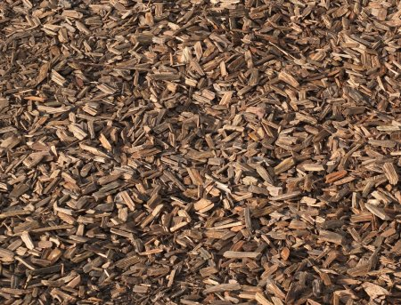 Photo for Wood chippings bark close up background brown - Royalty Free Image