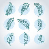 Vector set with feathers