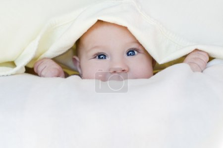 Photo for Baby girl is wrapped in white blanket - Royalty Free Image