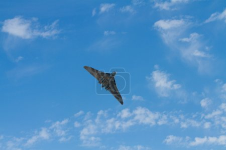 Vulcan bomber military aircraft formerly used by the British RAF