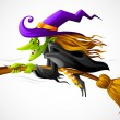 Vector illustration of halloween witch flying on b...