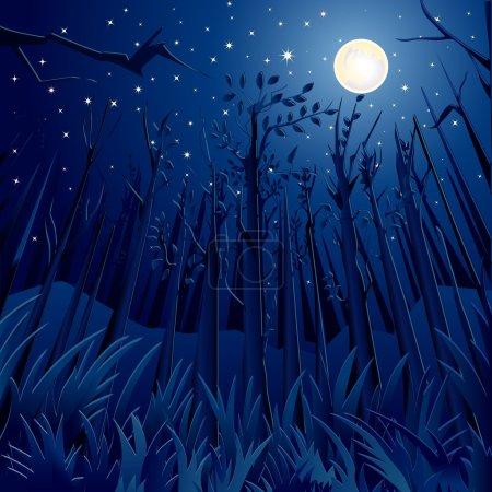 Night Jungle