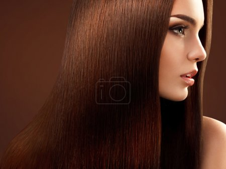 Brown Hair. Portrait of Beautiful Woman with Long Hair.