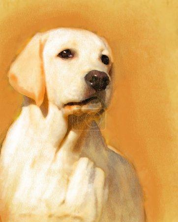 A yellow labrador oil portrait