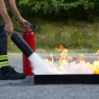 Instructor showing how to use a fire extinguisher ...