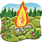 Camp Fire in forest cartoon illustration