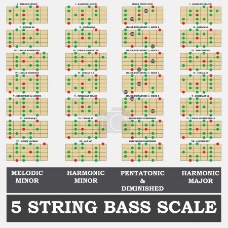 5 string bass scale minor for bass player teacher and student