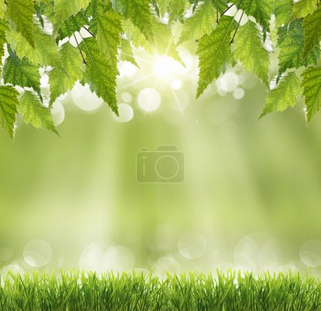Photo for Spring or summer season abstract nature background - Royalty Free Image