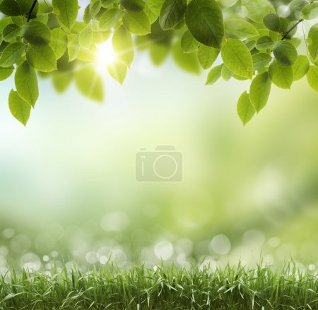 Photo for Spring or summer season abstract nature background with grass and blue sky in the back - Royalty Free Image