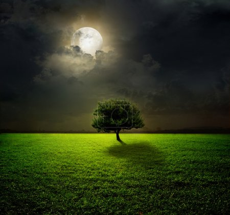 Photo for Night and the moon on a green field - Royalty Free Image
