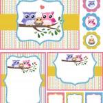 Owl baby shower invitation card set...