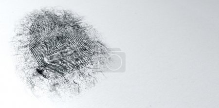 Photo for An extreme closeup of a fingerprint thats been dusted with black powder for evidence at a crime scene on an isolated textured white background - Royalty Free Image