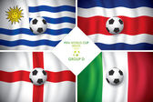 Brazil 2014 group D Vector flag with shadow FIFA word cup