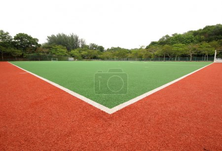 Artificial Turf on a Sports Field...