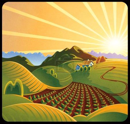 Summer solar rural landscape