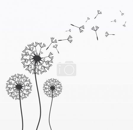 Three vector dandelions