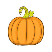 A detailed illustration of a pumpkin