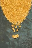 Přírodní Rýžoviště zlata