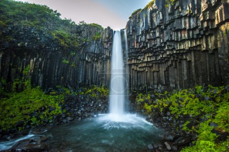 Svartifoss, Black Waterfall, Iceland