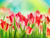Tulips garden with grass on blue sky EPS 10