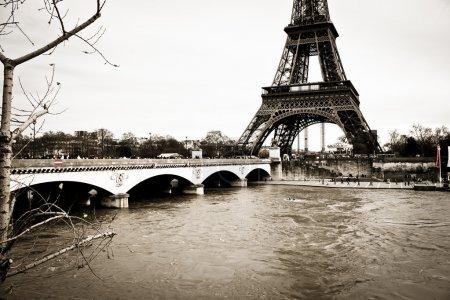 Eiffel tower monochrome square format