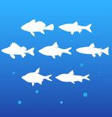 Siluety ryby