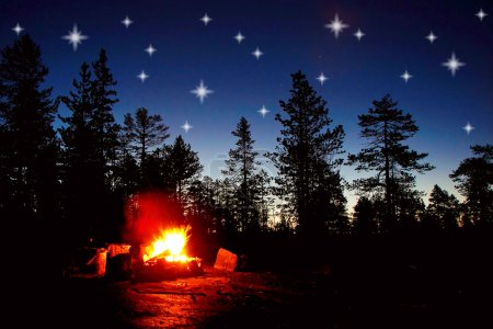 Fire burning at night in a forest with stars on sky