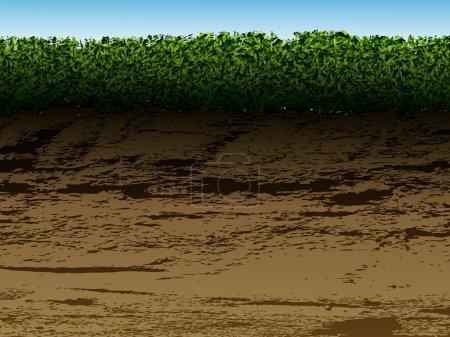 Illustration pour Sol avec herbe dans le contexte de l'observation - image libre de droit
