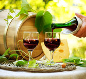červené víno a sýr. romantický oběd venkovní