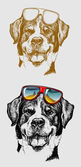 Cute dog with color glasses Drawing style with combination artistic lines Good use for pet shop design t-shirt design sticker illustration or any design you want