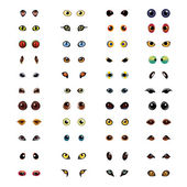 Big collection of different animal eyes in vector