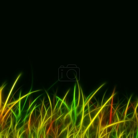 Elegant abstract colorful grass on black background
