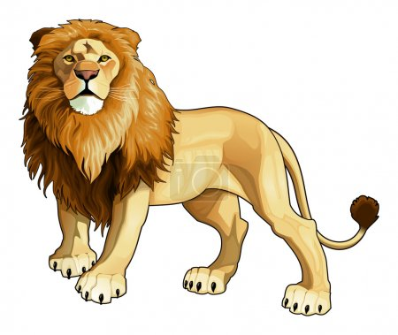 Illustration for Lion king. Vector isolated animal. - Royalty Free Image