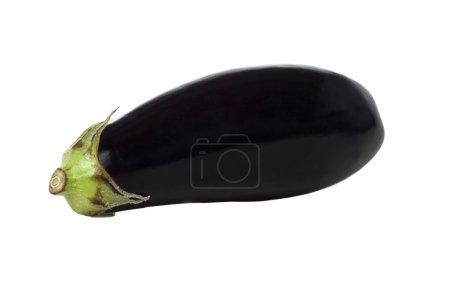 Eggplant or Aubergine vegetable