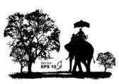 vector of elephants in thailand