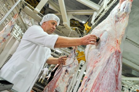 cutting meat in a meat factory