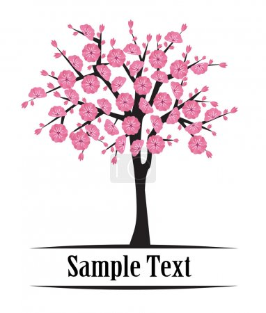 Japanese cherry tree blooming