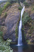 Přeslička vodopády v řece Columbii soutěska oregon