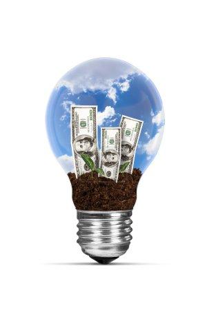 Light Bulb and Growing Dollar Bills