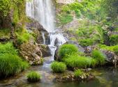 Vodopád a řeka v přírodě