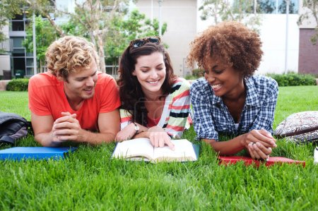 grupo de estudiantes universitarios felices en la hierba