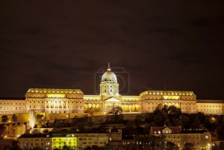 Buda Castle in Budapest (Hungary)
