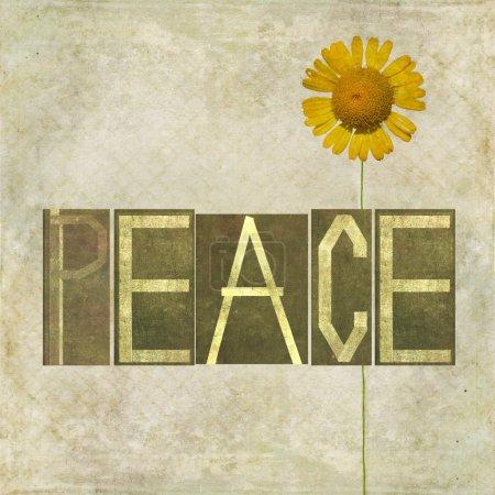 """Photo pour Élément d'image et le design de fond terreux représentant le mot """"paix à texture"""" - image libre de droit"""